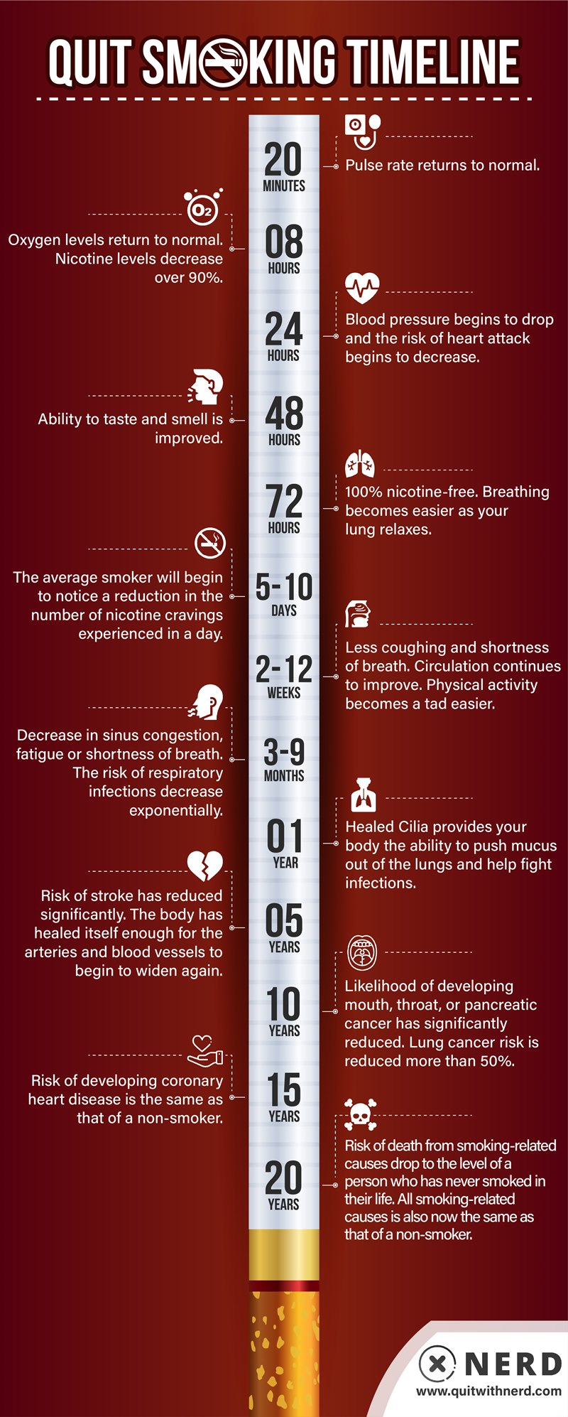Quit Smoking Timeline (INFOGRAPHIC)