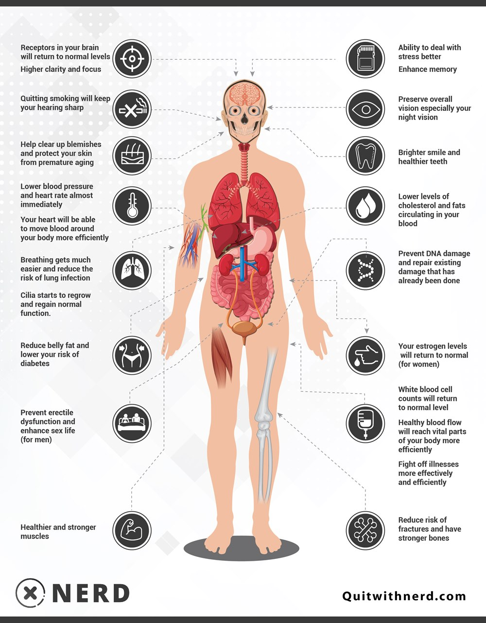What Happens to Your Body When You Stop Smoking (Infographic) by Quit With Nerd